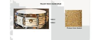 Trilogy Snare 14X6.5 Gold Sparkle (SA-SD1465TRGS)
